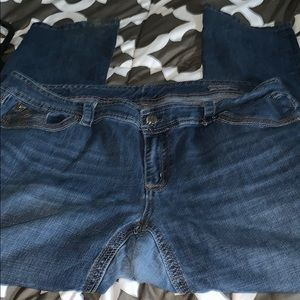 Melissa McCarthy Jeans - Melissa McCarthy dark jeans